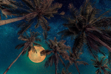 Wall Mural - Silhouette coconut palm tree with the full Moon and Milky way galaxy. Vintage tone