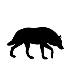 wolf vector illustration black silhouette