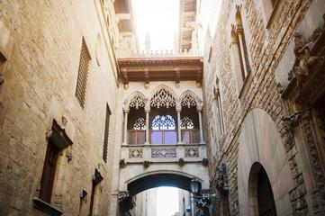 Barcelona, Spain, bridge in Carrer del Bisbe street, Barri Gotic