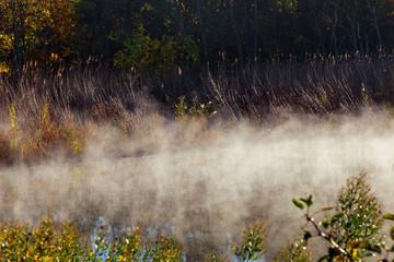 Beautiful foggy dawn over Fall River mist