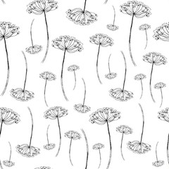 Vintage seamless pattren with floral pattern. The branches, dried flowers, inflorescence, dill, umbrella. Drawing made in black ink on an isolated background. Use for various design
