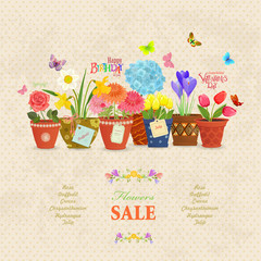 cozy collection of lovely flowers planted in ceramic pots for yo