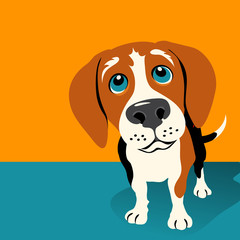 Illustration of a Beagle Dog on orange background with room for text. For posters, cards, banners.