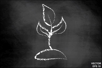 Sprout the tree on the chalkboard. For your design.