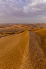 Endless Rub'al Khali right after the Rain