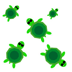 Turtles on white background