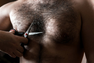 Closeup man with scissors cuts the hair on his hairy chest