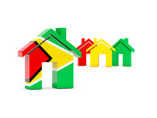 Flag of guyana, home icon