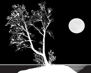 bare tree and moon isolated on black