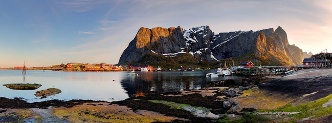 Wall Mural - Lofoten - Norway