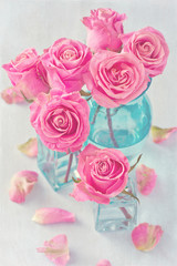 Close-up floral composition with a pink roses on a blue background .