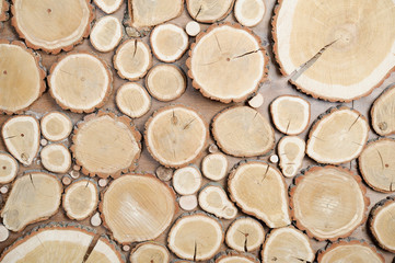 wall, background of wood, cut wooden disks