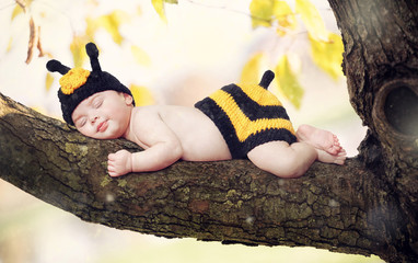 New born baby girl dressed as a bee.