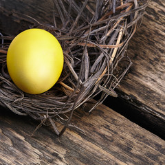 Colorful easter eggs in a nest on wooden background