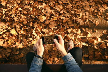 Brown autumn leaves and ground on the screen of a black smartphone held by a hipster in denim shirt