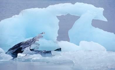 Torbogen aus Eis, Eisberge auf dem Jökulsárlòn, Austurland, Island, Europa