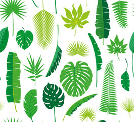 Beautiful seamless tropical jungle floral pattern background with different palm leaves. Vector illustration.