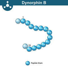 Valorphin biochemical compound, opioid peptide - Buy this