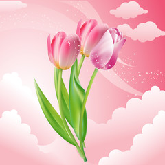 Vector icon. Three flowers. Tulips and sky
