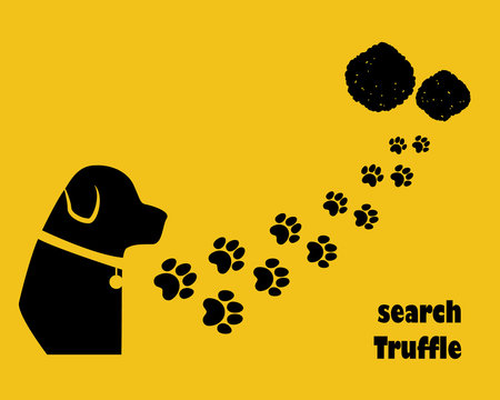 Dog with paw trail. Search truffle. Flat style.