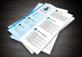 Resume Layout with Blue Left Sidebar