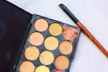 concealers and brushes