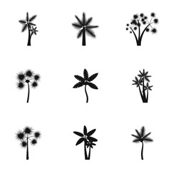 Palma icons set. Simple illustration of 9 palma vector icons for web