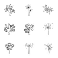 Tree palm icons set. Outline illustration of 9 tree palm vector icons for web
