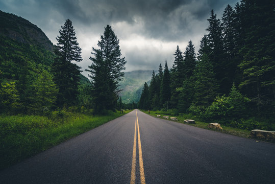 Forest road on a cloudy day.