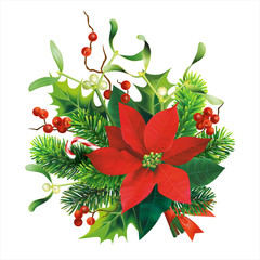 Christmas decoration with fir, mistletoe, holly branches and poinsettia flower. Isolated on white. Vector illustration.