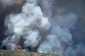 Dense White Smoke Rising from the Raging Wildfire