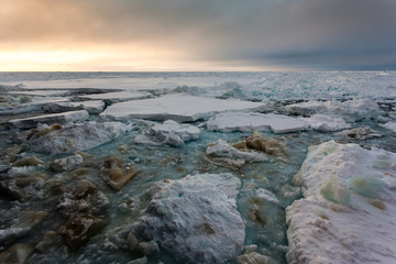 Panorama of ice-covered ocean