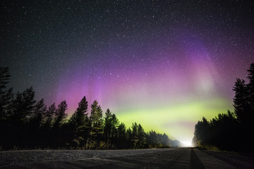 Roadway and northern lights, Lapland, Finland, Scandinavia, Europe