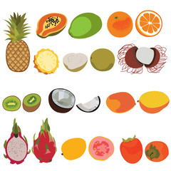 Tropic fruit isolated vector set illustration. Flat style vector set of fruits.