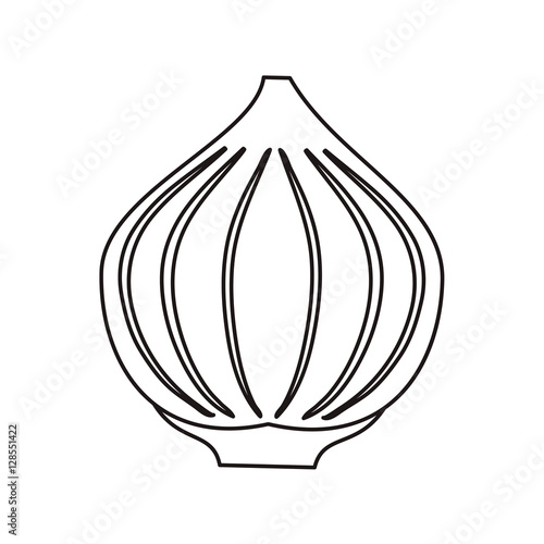 outline onion vegetable spicy natural icon vector illustration eps 10 ...