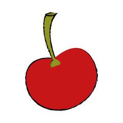 ripe cherry fruit nature design drawing vector illustration eps 10