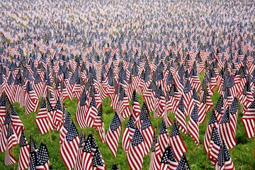 Thousands of American Flags
