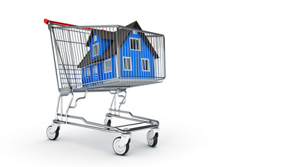 house in shopping cart concept. 3D rendering