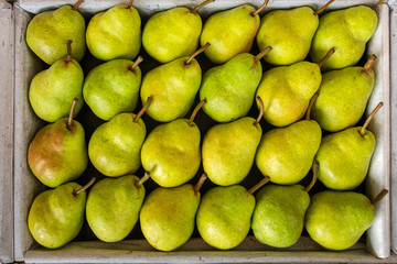 Tasty yellow pears in the box