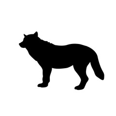wolf vector illustration  black silhouette side profile