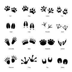 Black Animal Tracks Set. Vector