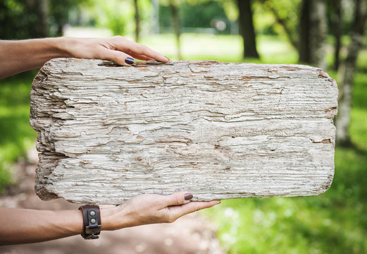 Empty wooden board hold by woman hand. Template mock up