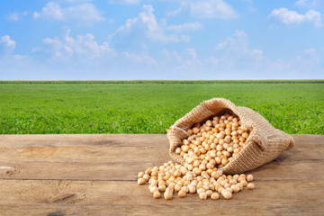 chickpeas grains with green field on the background