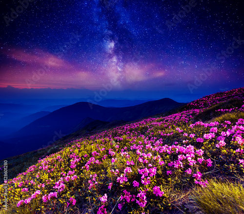 Wall mural starry night in mountain
