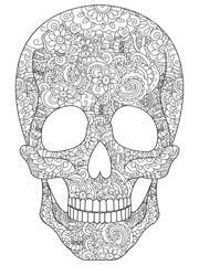 Skull coloring vector for adults