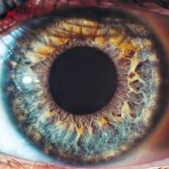 Printed kitchen splashbacks Iris Macro eyes pupil iris oculist blue yellow