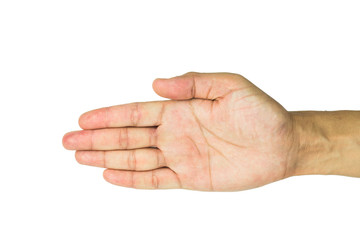 Male hand on the isolated background including clipping path
