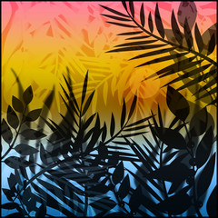 Illustration with summer sunset and tropical leaves