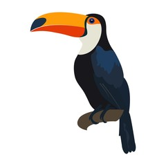 Toucan. Exotic and wild tropical bird. Toucan sitting on tree. Vector.