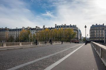 Wall Mural - Bridge across the river Seine in Paris